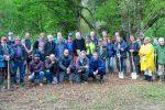 Rotarier und Wennedacher befreien Arboretum aus dem Dornröschenschlaf